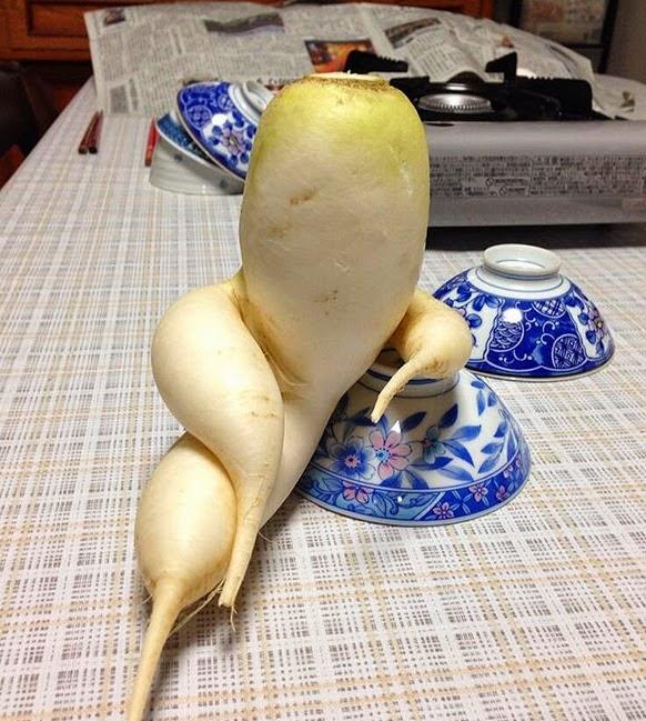 Vegetales con Formas Extrañas 1