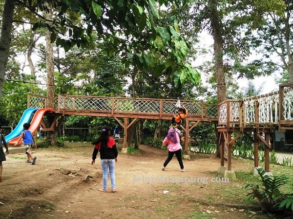 flying fox anak camp 91 kedaung