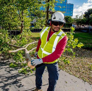 MEC&F Expert Engineers : Jesus Silva Romero, 36, employed by