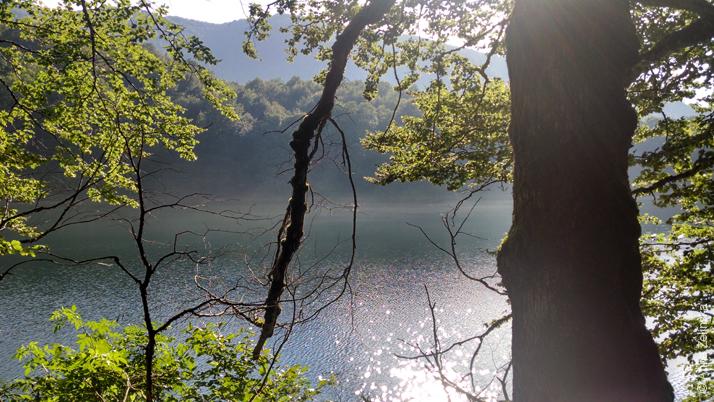 Озеро в парке Биоградска Гора, Черногория