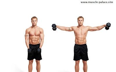 exercises for big shoulders