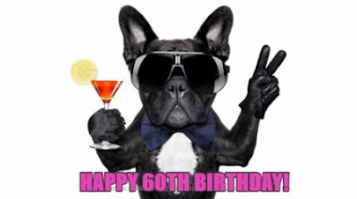 happy 60th birthday images funny dog