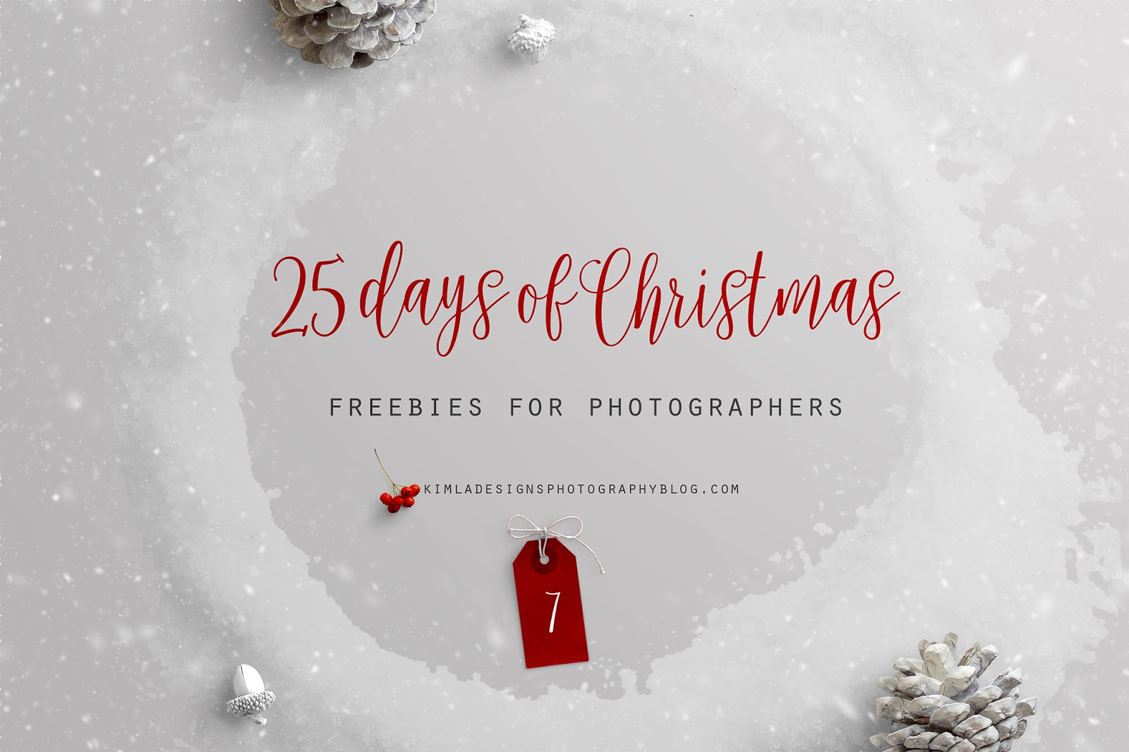 Day 7 of 25 Day fo Christmas Freebies for Photographers