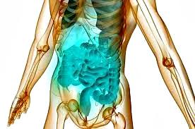 Gastroenteritis inflamación intestinos