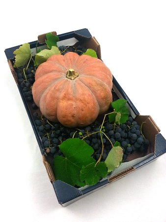 Pumpkin and grapes