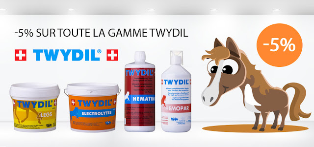 promotion twydil chevaux