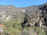 View north on Fish Canyon Trail toward the rugged canyon walls, Angeles National Forest