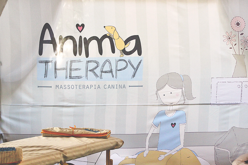 stand anima therapy