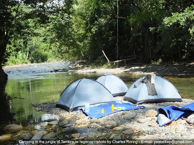 camping tour in tropical jungle