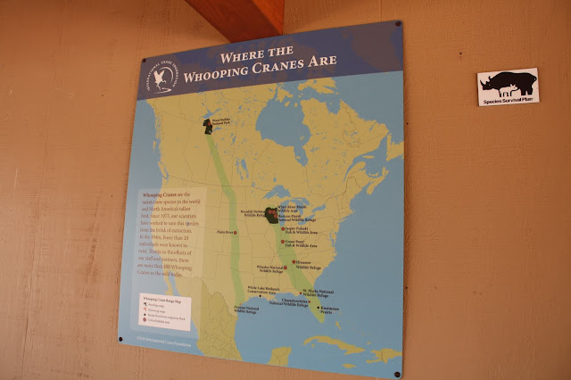 The range of the endangered Whooping Crane.