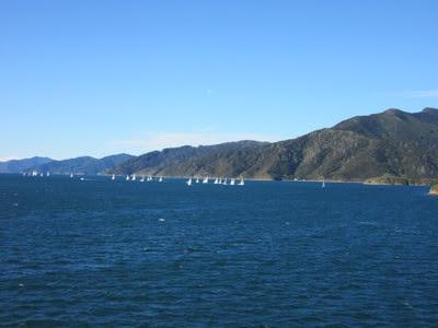 Vistas desde el ferry de Picton a Wellington, Nueva Zelanda