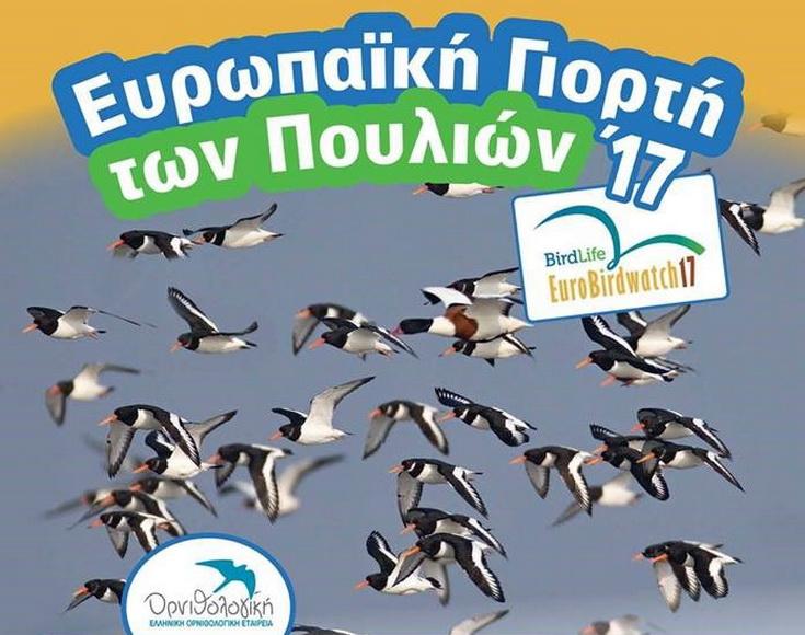 Ευρωπαϊκή Γιορτή των Πουλιών στο Δάσος της Δαδιάς