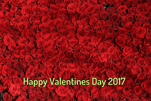 Happy Valentines Day Wishes  2017 For Girlfriend, Boyfriend