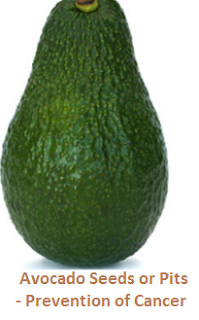 Avocado Seeds or Pits - Prevention of Cancer
