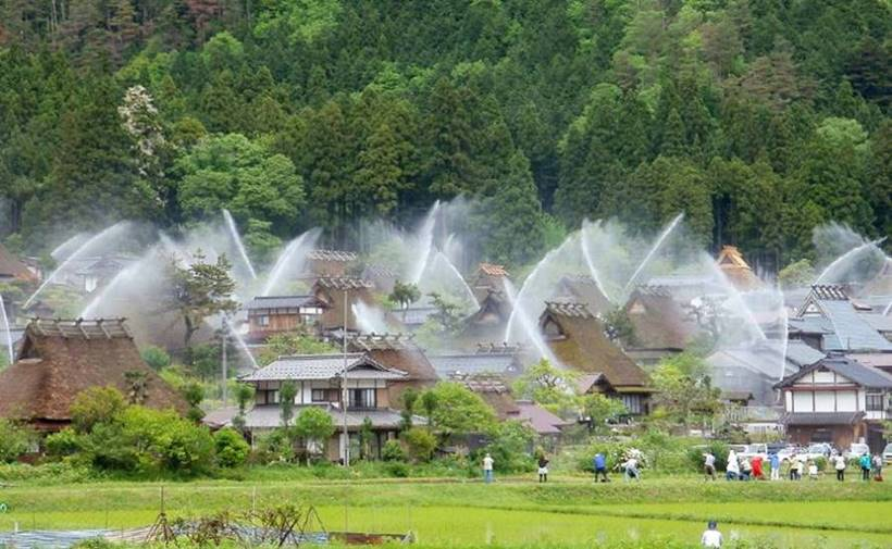 Kayabuki no Sato is known for its traditional farmhouses with its rooftops, which are covered by greenery