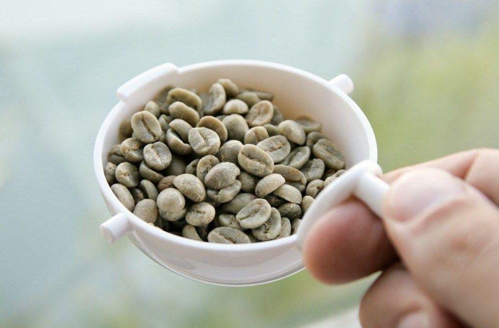 Manfaat Sumber Antioksidan Dalam Green Coffee