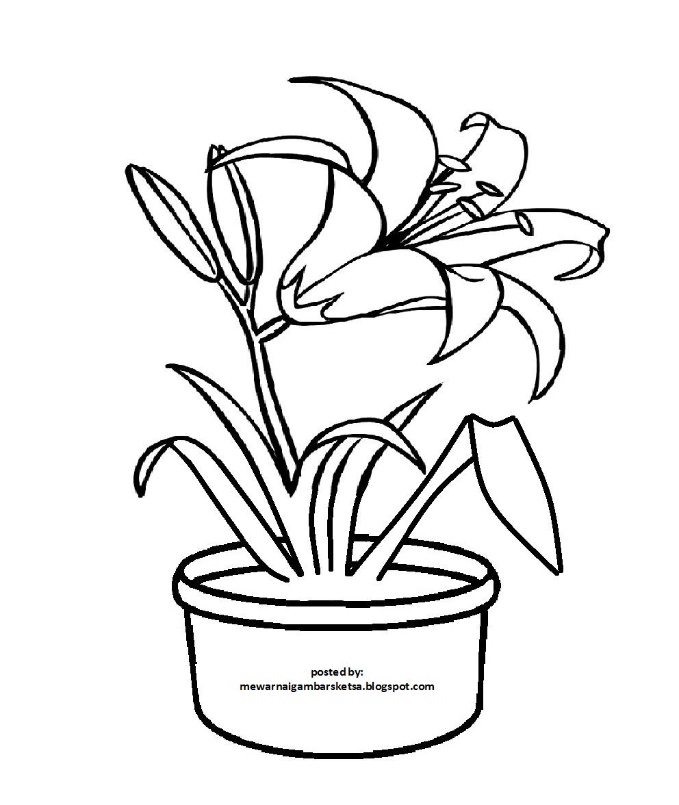 Sketsa Gambar Pot Bunga