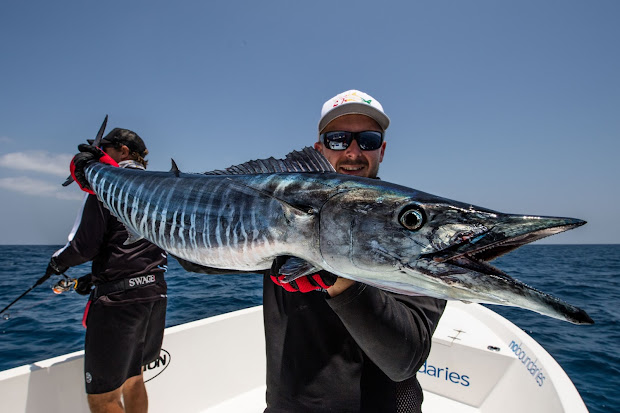 Ebb Tide Tackle Southern Summer Kingfish - Year of Clean Water