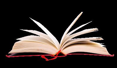 6 passos para seu livro fazer sucesso no mercado 7