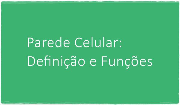 parede-celular-definicao-e-funcoes