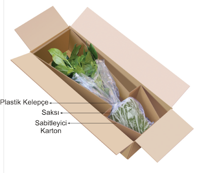 çiçekler nasıl paketlenir