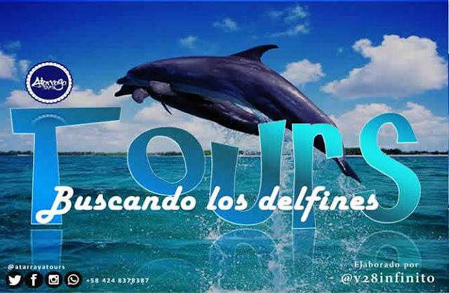 imagen Tours buscando los delfines nueva ruta