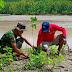 Cegah Abrasi Sungai, TNI-PMI Berkolaborasi Tanam 1000 Pohon