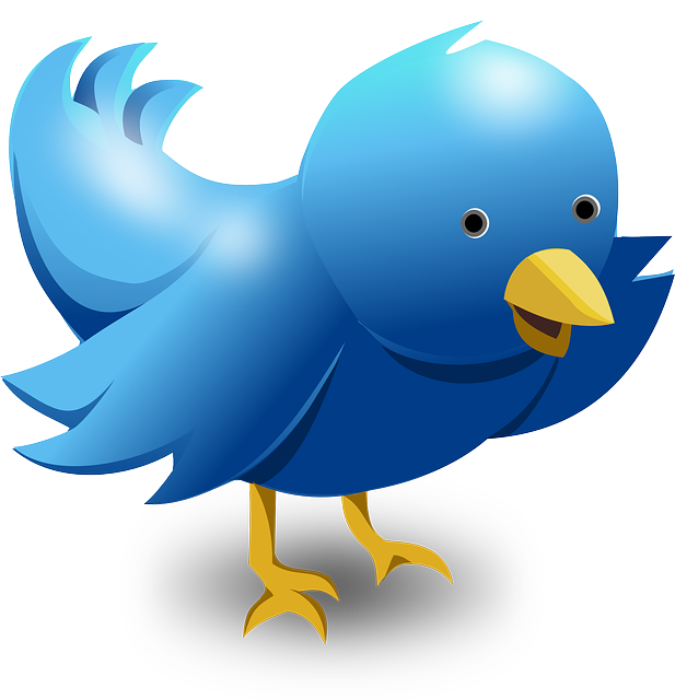 Promoting Your Website on Twitter
