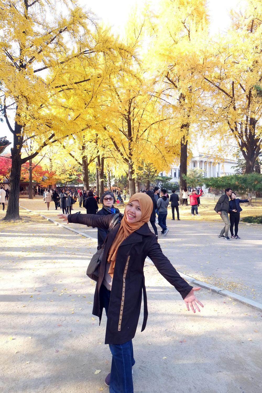 Musim gugur, saat terbaik berkunjung ke Korea  Beyond Vacation