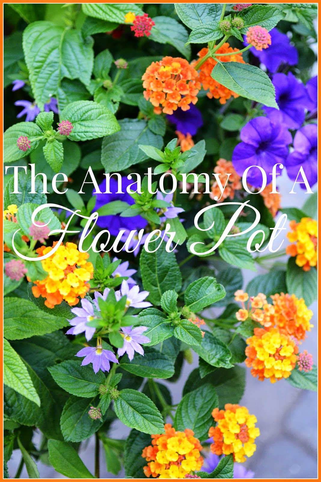 The Anatomy Of A Flower Pot Stonegable