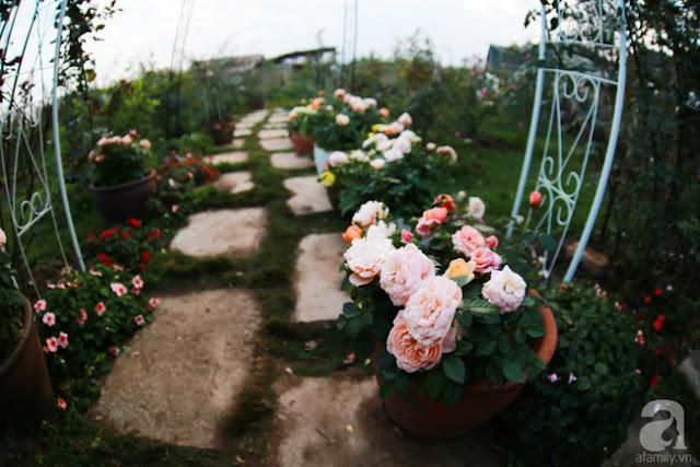 Lối đi đầy thơ mộng
