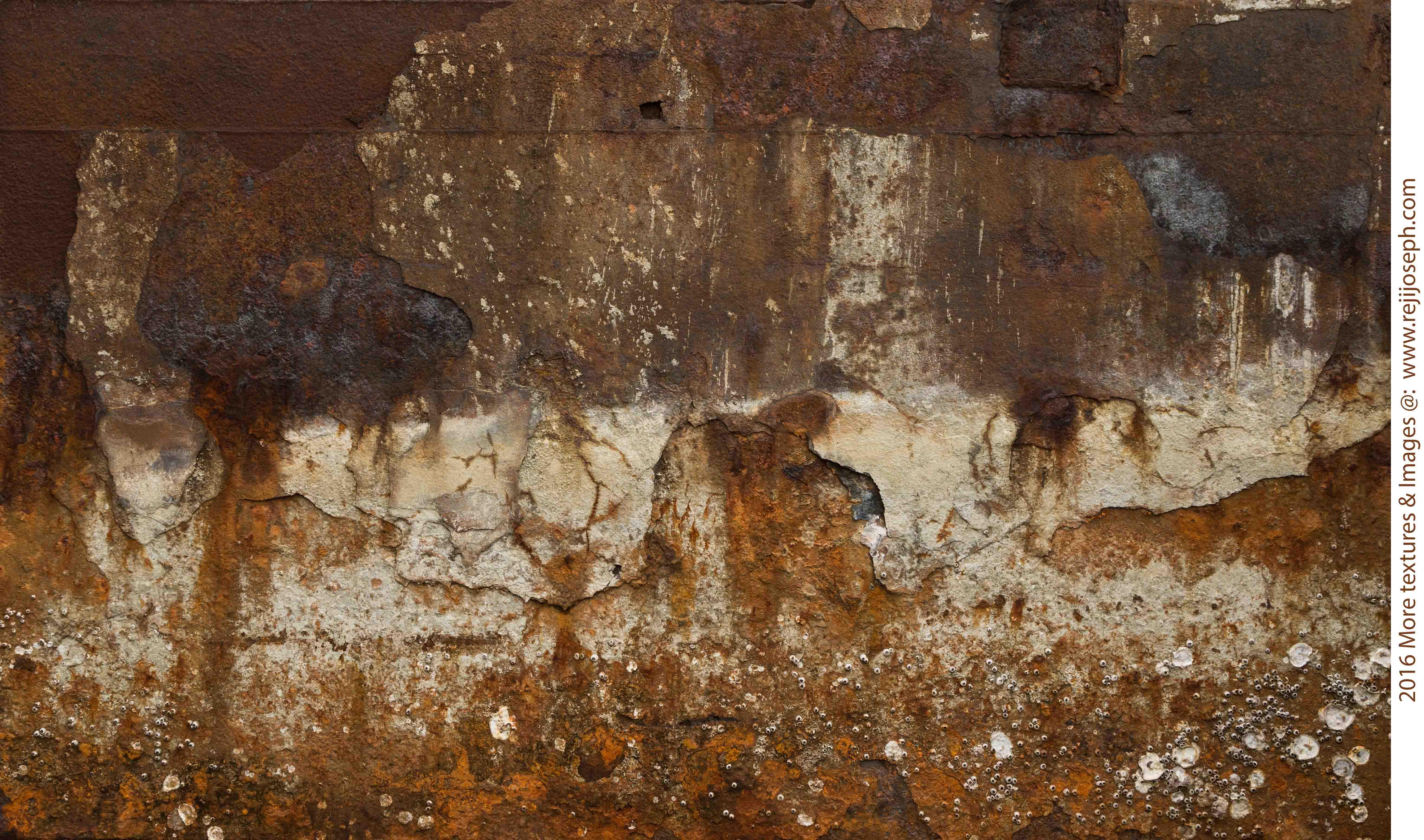 Rusty metal texture 00014