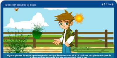 http://repositorio.educa.jccm.es/portal/odes/conocimiento_del_medio/las_plantas/contenido/cm07_oa05_es/index.html