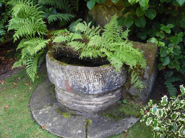 woda w ogrodzie w wersji mini