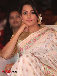 Actress Anita Hanandani Pictures in Saree at Mo Okkadu Audio Launch  0003