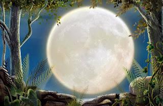 Жужжук летит к луне
