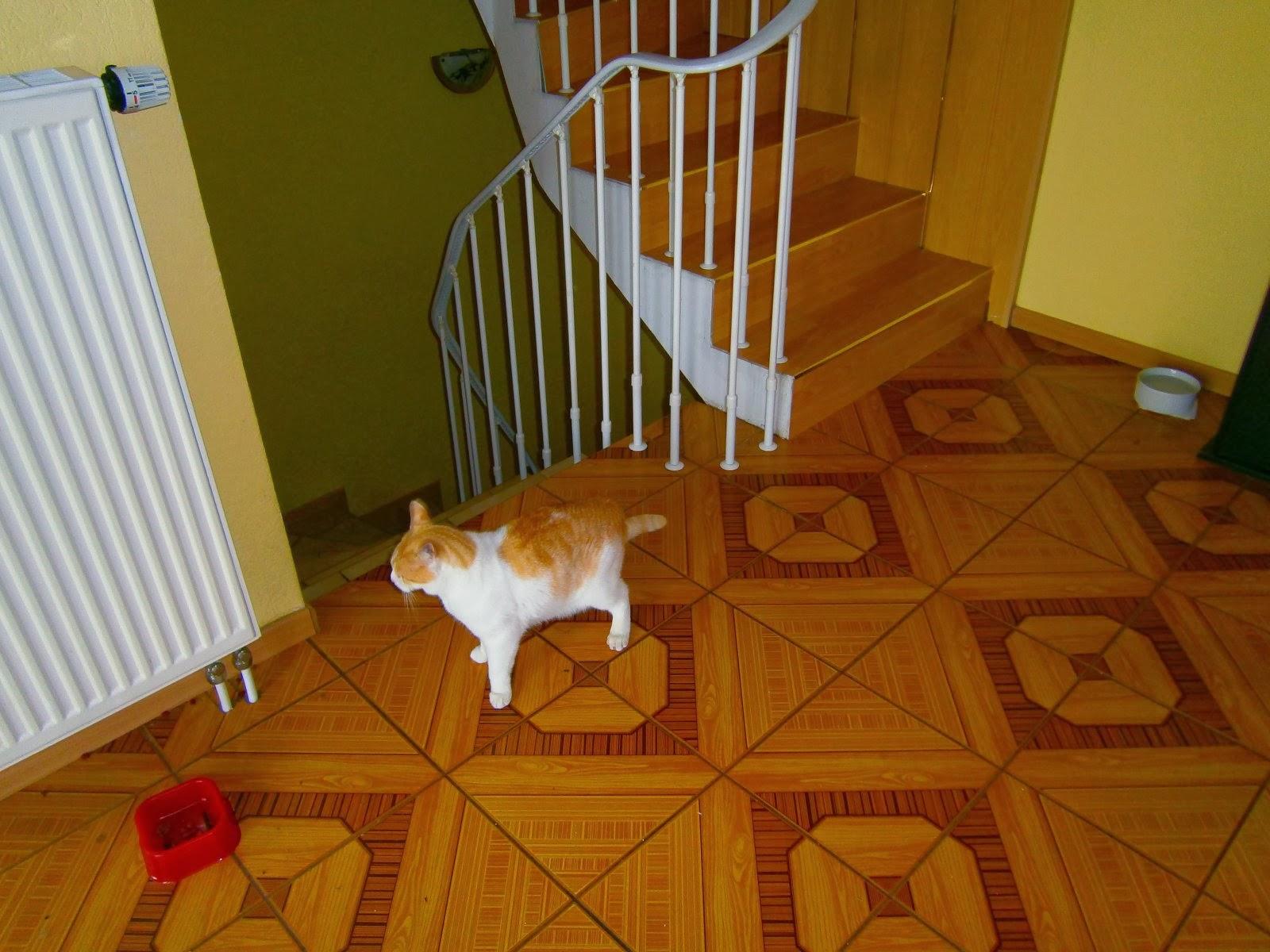 Treppenrenovierung - Podest-Fläche vor den Stufen vorher