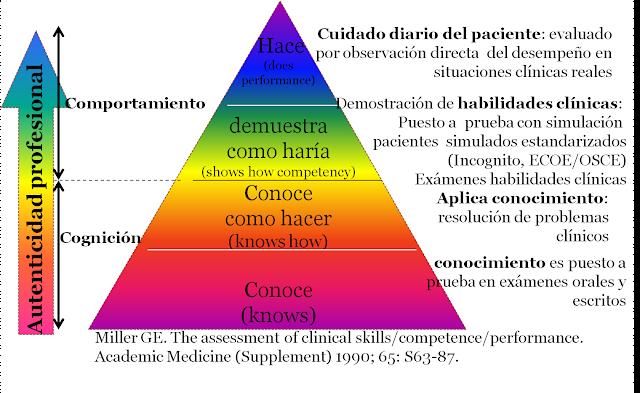 pirámide competencias