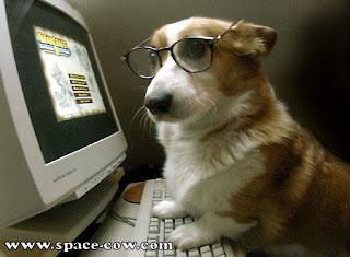 Profesor anjing Main Warcraft