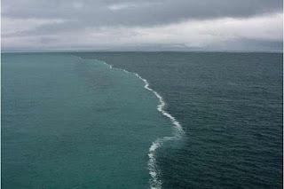 две морета