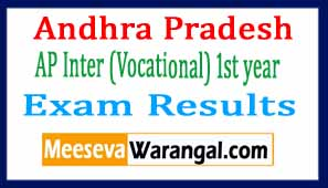 AP Inter (Vocational) 1st year Exam Results 2017