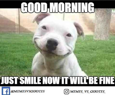 Just Smile Now It Will Be Fine