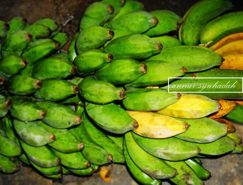 tandan pisang raja tropikal
