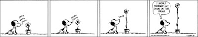I couldn't spontaneously come up with a more absurdist solution to this abysmal material either. By the way, Snoopy's line is taken from YGOTAS, of course. That series was epic for the entirety of its two seasons.
