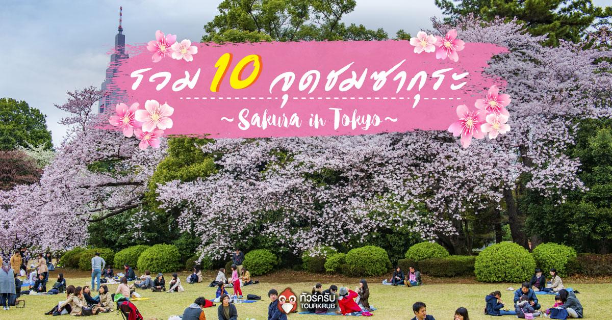 เที่ยวโตเกียว !! รวม 10 จุดชมซากุระ ณ กรุงโตเกียว