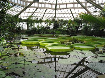 Qué ver en Oslo - El Jardín Botánico