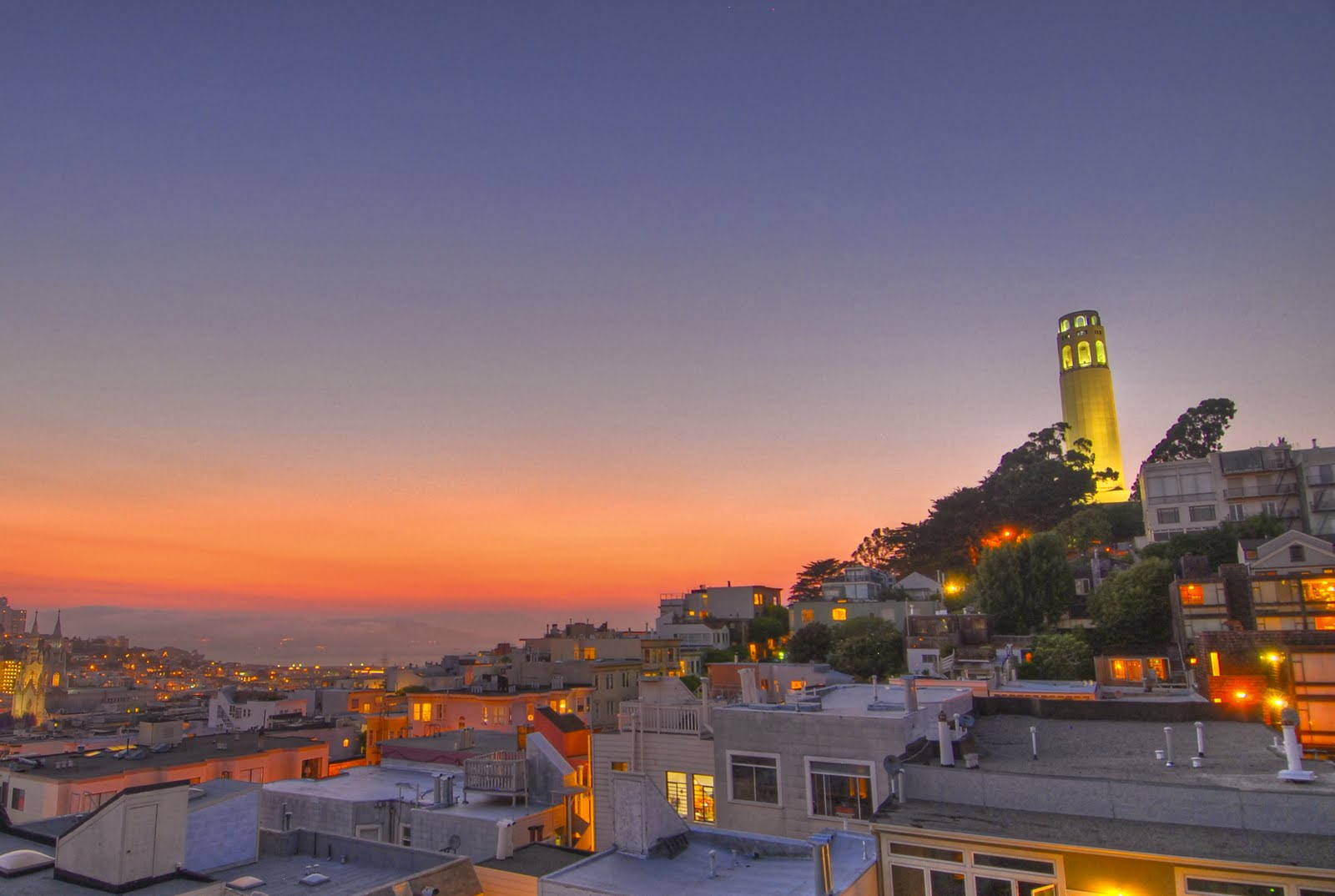 Free San Francisco's Coit Tower Stock Photo - FreeImages.com |Coit Tower Flowers