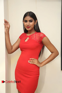 Actress Model Honey Pictures at Anoos Franchise Salon and Clinic Launch  0046.JPG