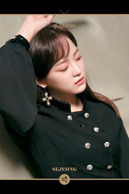 Sejeong (세정)
