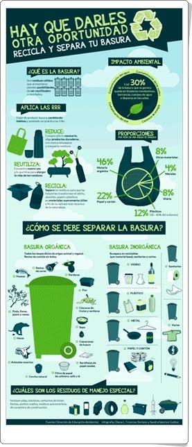 """""""Recicla y separa tu basura"""" (Infografía de Educación ambiental)"""